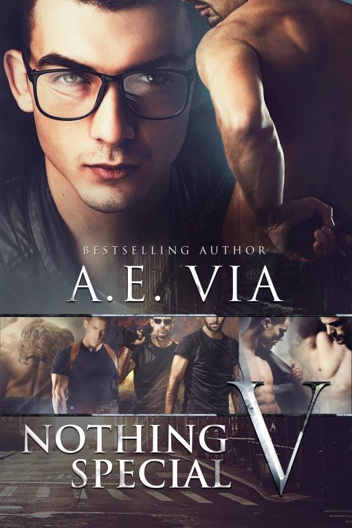 nothing-special-5-jayaheer2016-ebook-cover
