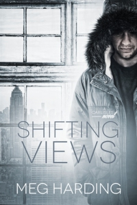 shifting-views