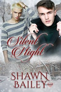 silent-night-by-shawn-bailey